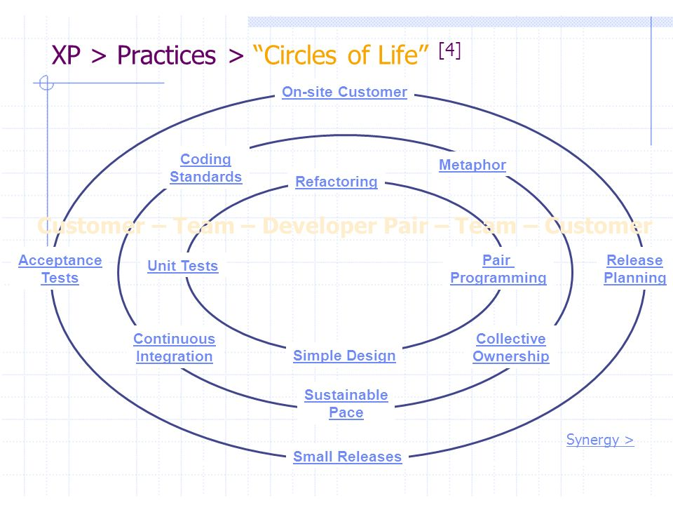 XP > Practices > Circles of Life [4]